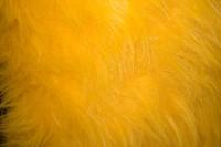Langhåret pels i gul