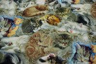 Bomuldsjersey med sovende kattekillinger i digitaltryk