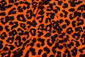 Orange og sort bomuldsjersey med dyretryk