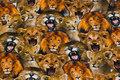 Bomuldsjersey med søde løvehoveder
