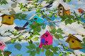 Bomuldsjersey med søde fuglehuse