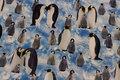 Bomuldsjersey med pingviner med unger