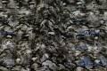 Flot sort-grå quilt i slangemønster