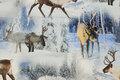 Bomuldsjersey med rensdyr i vinterlandskab