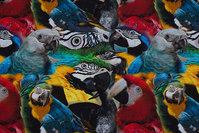 Bomuldsjersey med masser af papegøjer