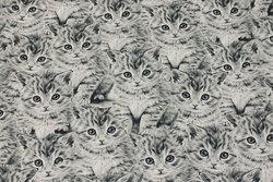 Mellemsvær bomuldscanvas med grå katte