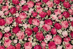 Sort bomuld med 2-4 cm pink roser