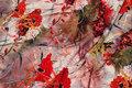 Let bluse og kjole micro-polyester stretch med røde valmuer.