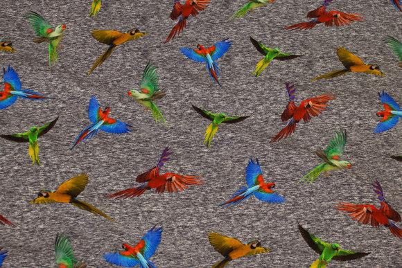 Gråmeleret bomuldsjersey med farvestrålende papegøjer