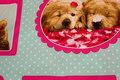 Mintgrøn patchwork bomuld med katte- og hundeportrætter