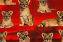 Løveunger er ca. 4-8 cm.