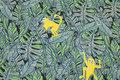 Støv blågrøn bomuldsjersey med gule aber.