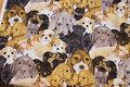 Patchwork-bomuld med søde hundehoveder