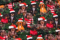 Bomuldsjersey med søde nisse-hunde
