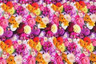 Bomuldsjersey med sommerblomster i pink og lilla nuancer