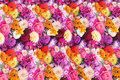 Bomuldsjersey med sommerblomster i pink og lilla nuancer.
