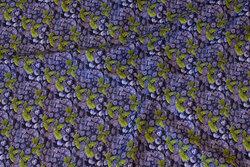 Bomuldspoplin med ca. 1 cm store blåbær