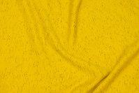 Let, ruet vinterisoli i meleret gul