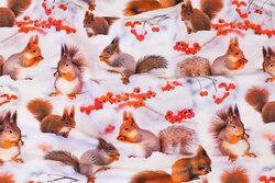 Hvid bomuldsjersey med egern i sneen