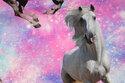 Hestene er ca. 15-24 cm.