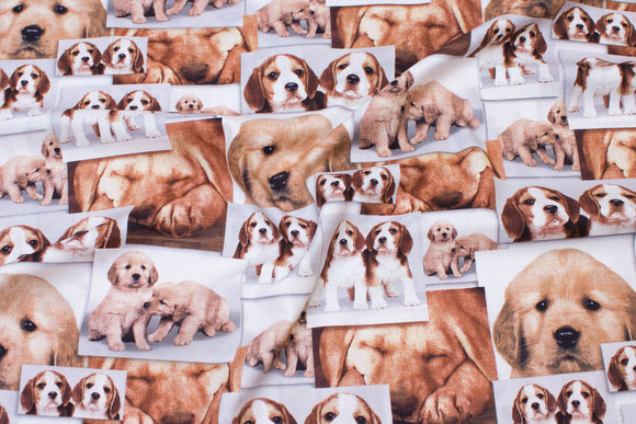 Bomuld med hundehvalpe i lyse farver