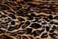 Leopard pels i brun-sort med naturligt mønster.