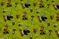 Vårgrøn bomuldsjersey med Kung Fu Panda.