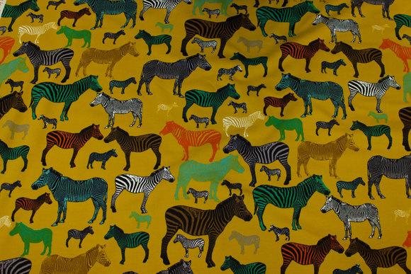 Messinggul, let isoli med ca. 3-10 cm zebraer