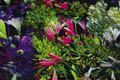 Bomuldsjersey med blomster i lilla, grøn og pink.