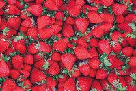 Bomuldsjersey med flotte jordbær